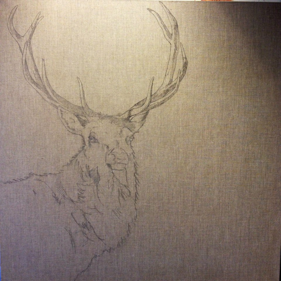 how-to-paint-and-awesome-deer-2
